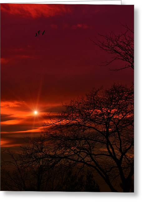 Sunset Prints Photographs Greeting Cards - Suburban Skies Greeting Card by Tom York Images