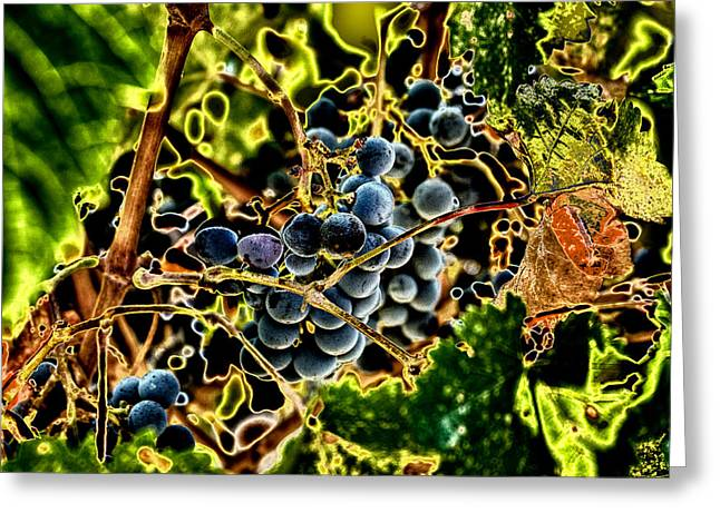 Fruit On The Vine Greeting Cards - Succulent Grapes Greeting Card by David Patterson