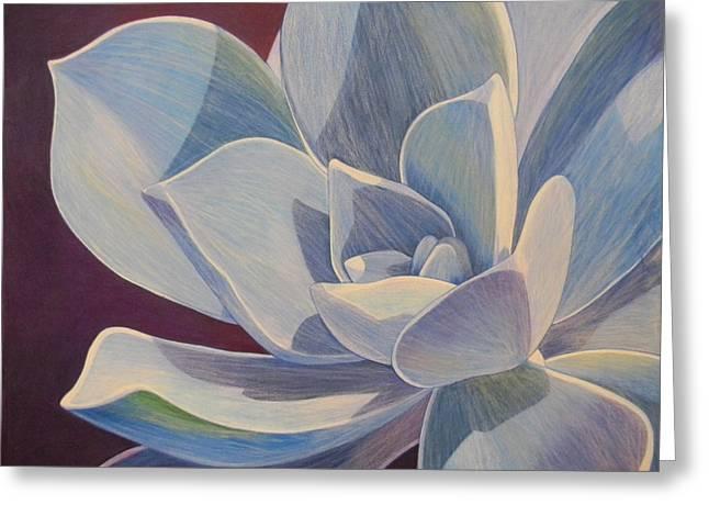 Adel Nemeth Greeting Cards - Succulent Plant Greeting Card by Adel Nemeth