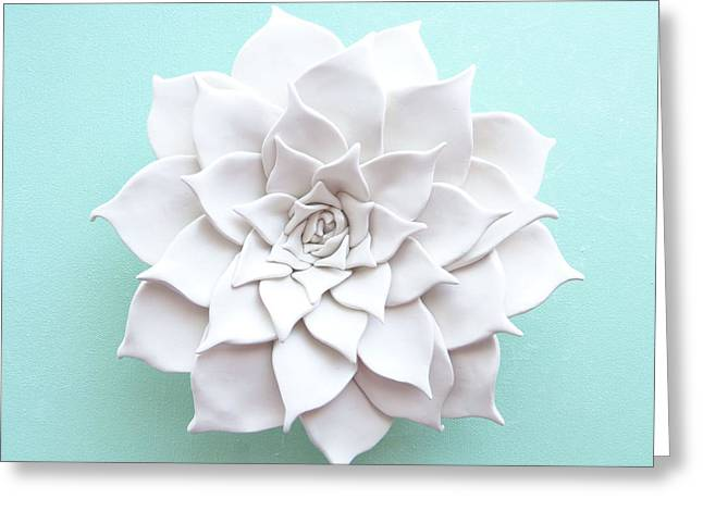 White Ceramics Greeting Cards - Succulent Plant Wall Sculpture - Spring Greeting Card by Lenka Kasprisin