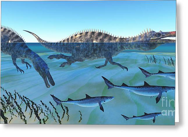 Shark Fossil Teeth Greeting Cards - Suchomimus Hunting Fish Greeting Card by Corey Ford