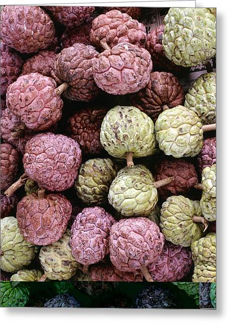 Annona Photographs Greeting Cards - Sugar Apple (Annona squamosa) Greeting Card by Science Photo Library