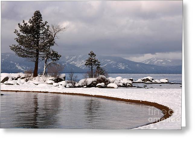 Powder Greeting Cards - Sugar Frosted Lake Shore Greeting Card by Juan Romagosa