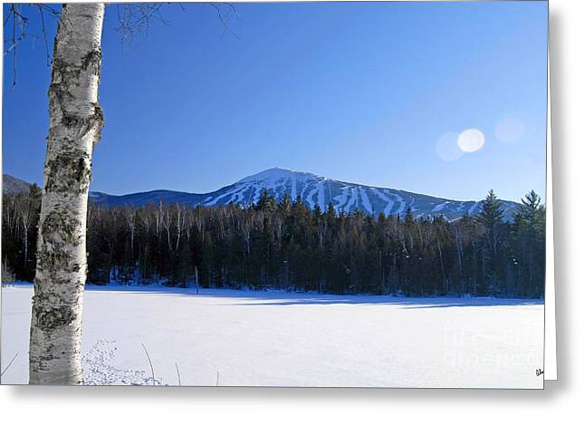 Sugarloaf Usa Greeting Card by Alana Ranney