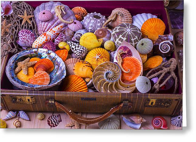 Overflow Greeting Cards - Suitcase Full Of Sea Shells Greeting Card by Garry Gay