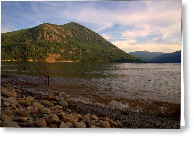 Lake Washington Pyrography Greeting Cards - Sullivan Lake Greeting Card by Stuart Baxter