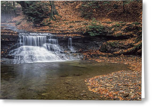 Sulphur Spring Greeting Cards - Sulphur Springs Waterfall Greeting Card by Dale Kincaid