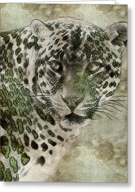 The Tiger Greeting Cards - Sultan of the Jungle - Cheetah Greeting Card by Celestial Images