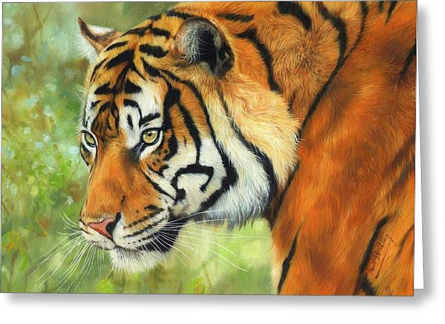 Amur Greeting Cards - Sumatran Tiger 2 Greeting Card by David Stribbling