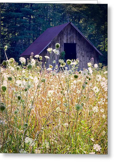 Barn Landscape Photographs Greeting Cards - Sumer Barn 2 Greeting Card by Rob Travis