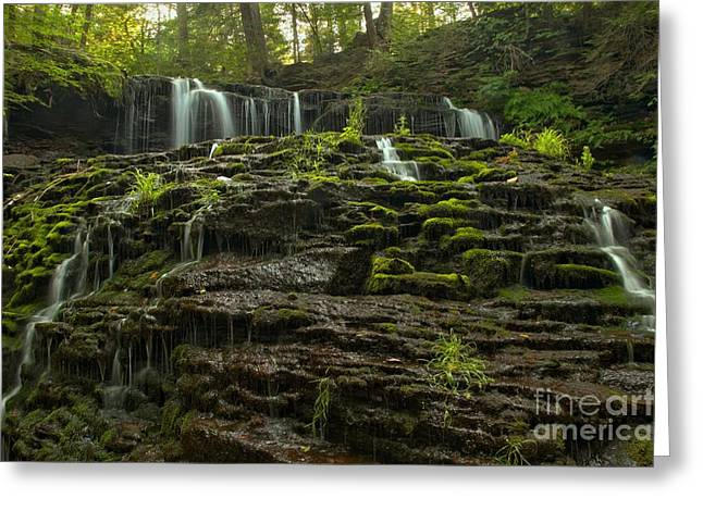 Mohawk Park Greeting Cards - Summer At Mohawk Falls Greeting Card by Adam Jewell