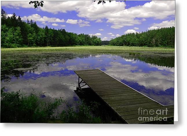 Promised Land Greeting Cards - Summer at the Lake Greeting Card by David Rucker