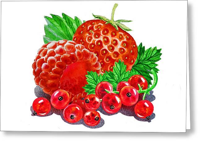 Summer Berries Greeting Card by Irina Sztukowski