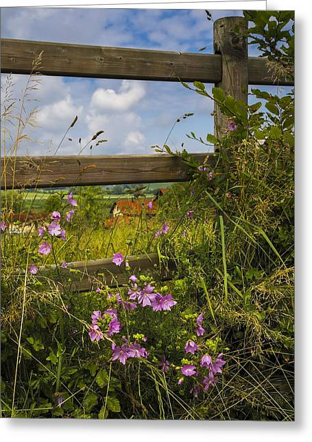 Charming Cottage Greeting Cards - Summer Breeze Greeting Card by Debra and Dave Vanderlaan