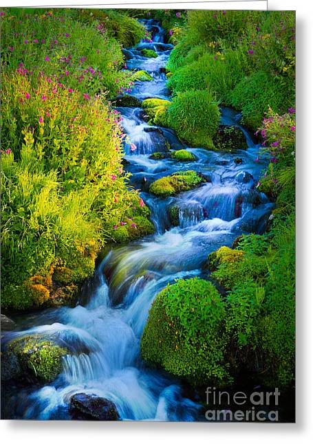 Spectacular Greeting Cards - Summer Cascade Greeting Card by Inge Johnsson