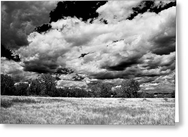 Field. Cloud Mixed Media Greeting Cards - Summer Clouds In Colorado BW Greeting Card by Angelina Vick