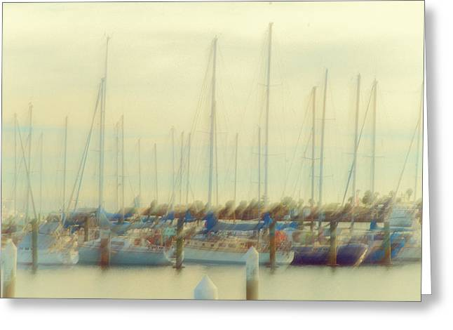 Moored Sailboats Greeting Cards - Summer Colors Greeting Card by Constance Fein Harding