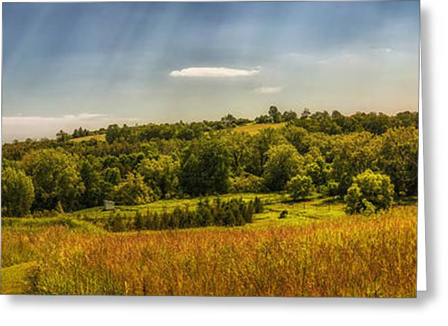 Warm Landscape Greeting Cards - Summer countryside Greeting Card by Elena Elisseeva