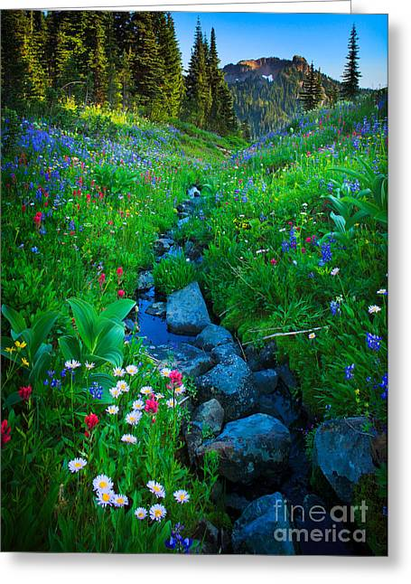 Green Hills Greeting Cards - Summer Creek Greeting Card by Inge Johnsson