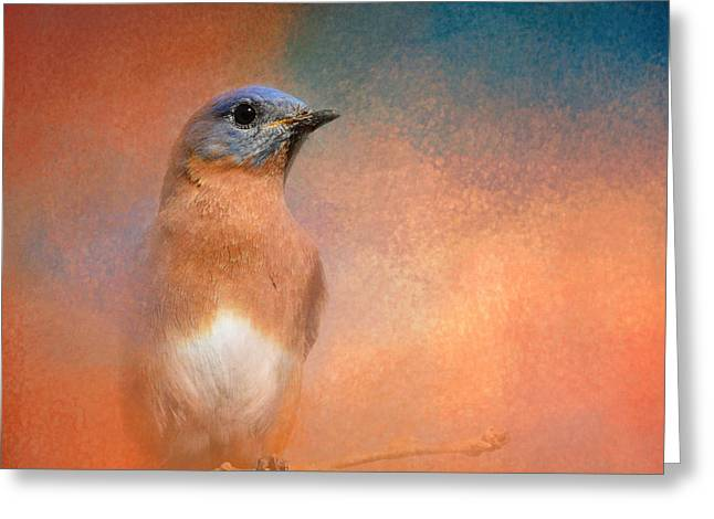 Birds On A Branch Greeting Cards - Summer Day Bluebird - Wildlife Greeting Card by Jai Johnson
