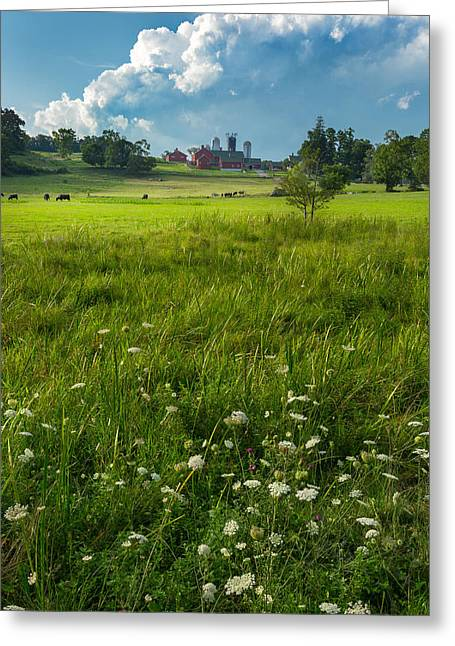 Rural Greeting Cards - Summer Days Greeting Card by Bill  Wakeley