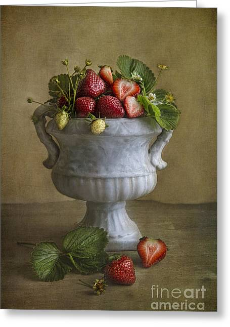 Fresh Food Photographs Greeting Cards - Summer Delight Greeting Card by Elena Nosyreva