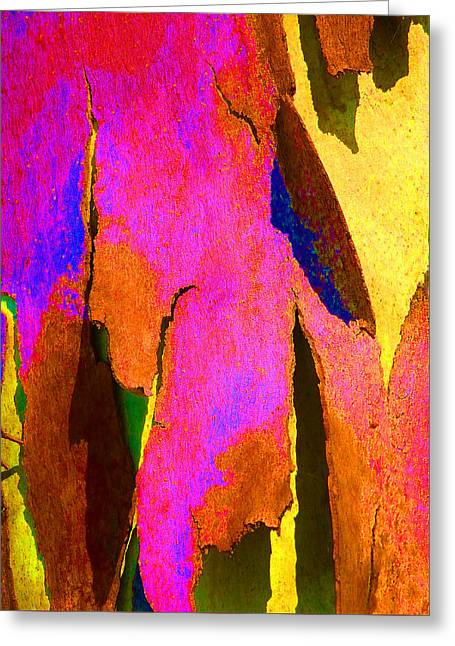 Coloured Bark Greeting Cards - Summer Eucalypt Abstract 8 Greeting Card by Margaret Saheed
