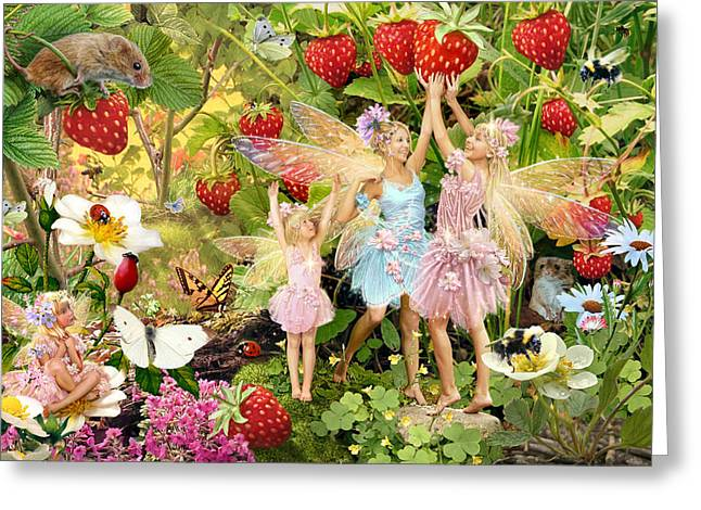 Picking Greeting Cards - Summer Fairies Greeting Card by Steve Read