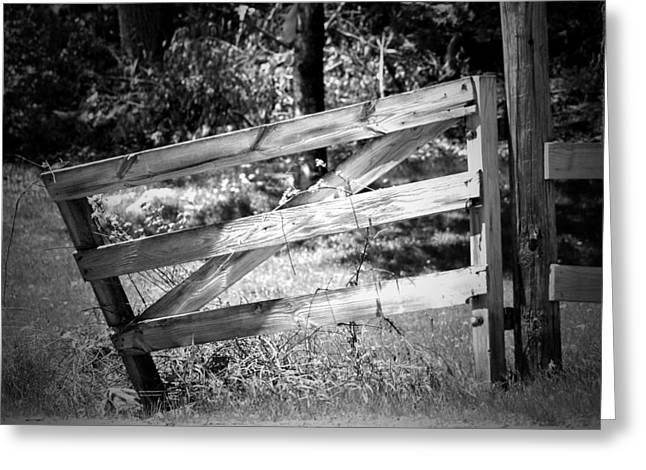 Split Rail Fence Greeting Cards - Summer Fence I Greeting Card by Karen Warner