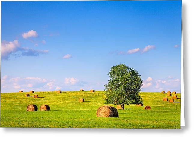 Hay Bales Greeting Cards - Summer field Greeting Card by Alexey Stiop