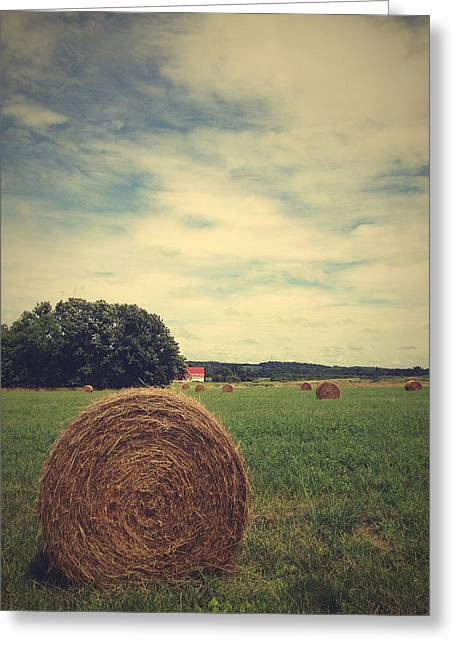 Joy Stclaire Greeting Cards - Summer Field of Dreams Greeting Card by Joy StClaire