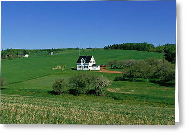 Princes Greeting Cards - Summer Fields And Houses, Prince Edward Greeting Card by Panoramic Images