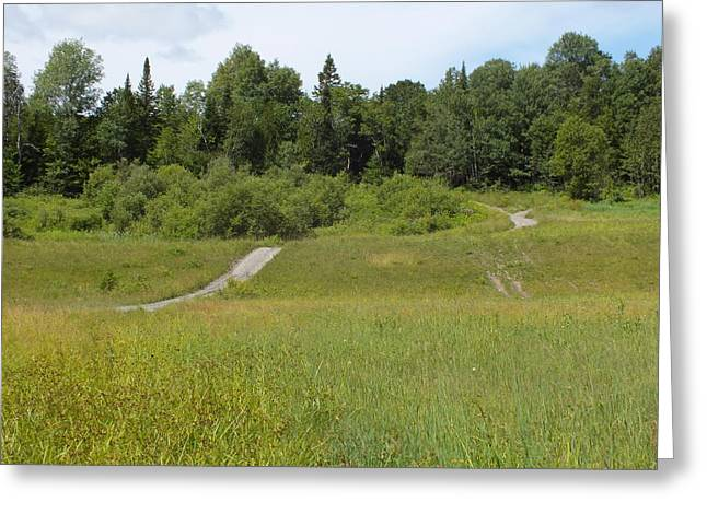 Rural Maine Roads Greeting Cards - Summer Fields Greeting Card by Gene Cyr