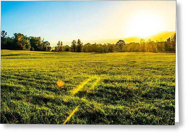 Grassy Field Greeting Cards - Summer Fields Greeting Card by Parker Cunningham