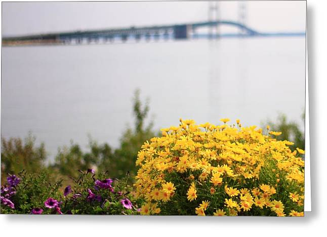 Bridge Of Flowers Greeting Cards - Summer Flowers At Mackinac Bridge Greeting Card by Dan Sproul