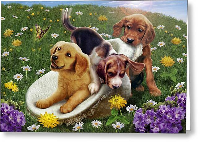 Puppies Greeting Cards - Summer Frolics Greeting Card by Andrew Farley