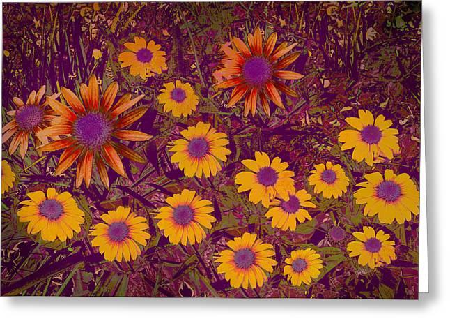 Summer Garden Greeting Card by Ann Powell