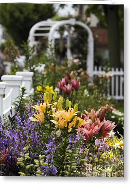 Trellis Greeting Cards - Summer Garden - D002079 Greeting Card by Daniel Dempster