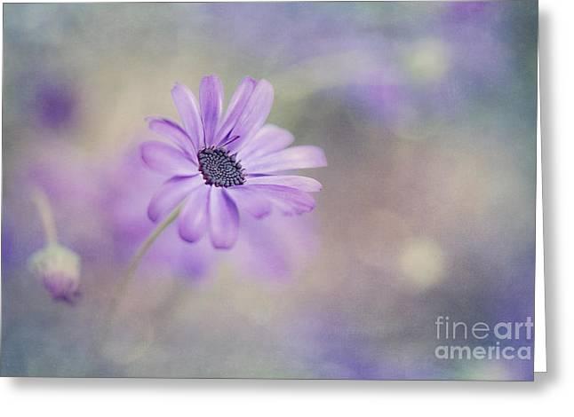 Summer garden Greeting Card by Priska Wettstein