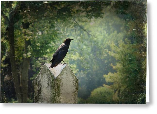 Ravens In Graveyard Greeting Cards - summer Gothic Crow Greeting Card by Gothicolors Donna Snyder