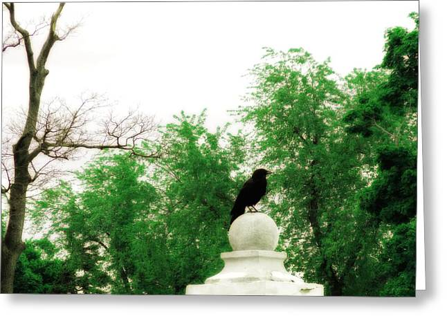 Lush Green Digital Greeting Cards - Summer Greens And Crow Greeting Card by Gothicolors Donna Snyder