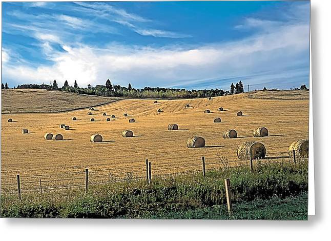 Hay Bales Paintings Greeting Cards - Summer Hay 4 Greeting Card by Terry Reynoldson