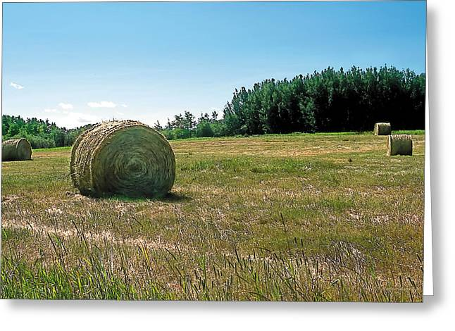 Agriculture Paintings Greeting Cards - Summer Hay Greeting Card by Terry Reynoldson