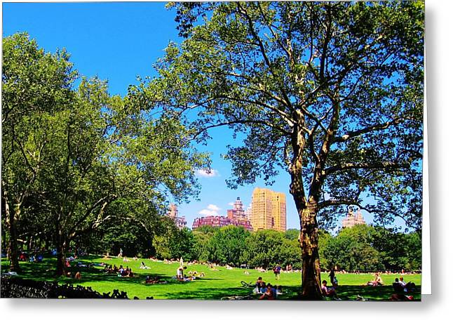 Sunday Picnic Greeting Cards - Summer in Central Park Greeting Card by Jeannie Allerton