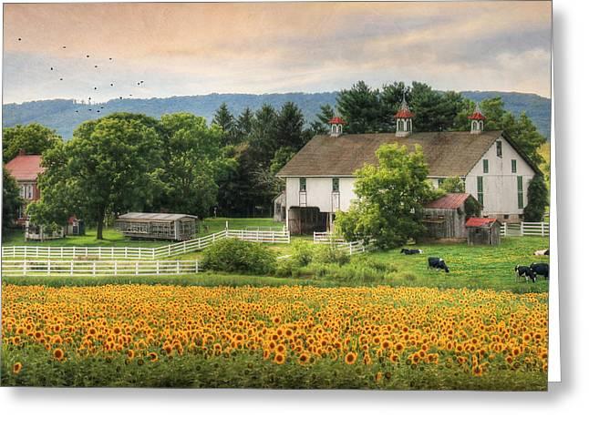 Barn Digital Greeting Cards - Summer in Gratz Greeting Card by Lori Deiter