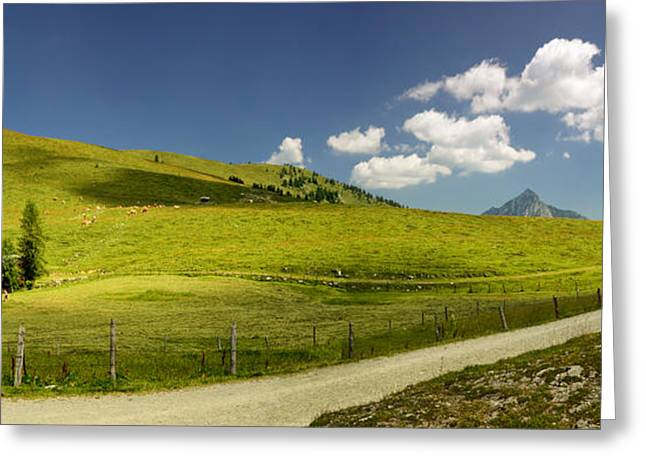 Mountain Cabin Greeting Cards - Summer in the Mountains Panorama Greeting Card by Sabine Jacobs