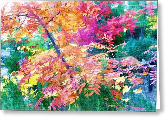 Outdoors Greeting Cards - Summer into Autumn Garden Abstract No 2 Greeting Card by Douglas MooreZart