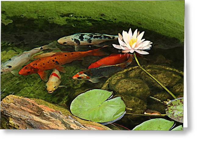 Recently Sold -  - Lilly Pads Greeting Cards - Summer Koi and Lilly Greeting Card by Amanda Smith