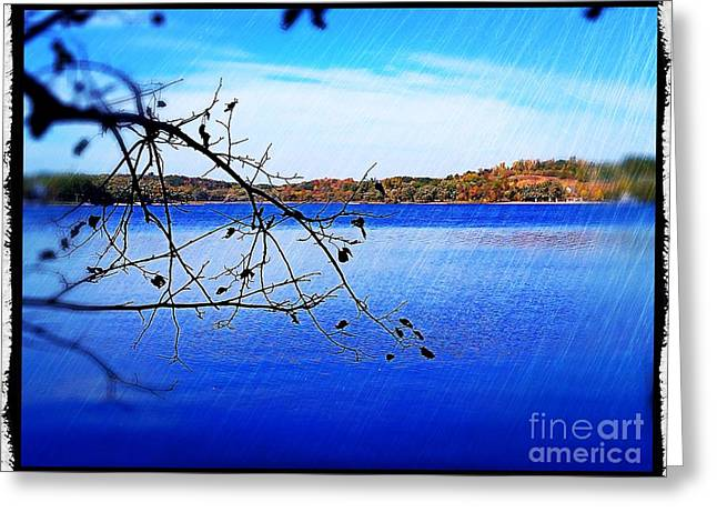 Calm Waters Digital Greeting Cards - Summer Lake Greeting Card by Perry Webster