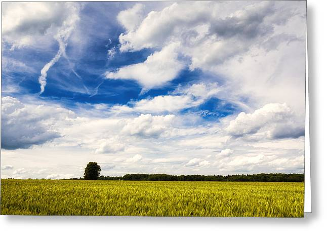 Summer Landscape With Cornfield Blue Sky And Clouds On A Warm Summer Day Greeting Card by Matthias Hauser